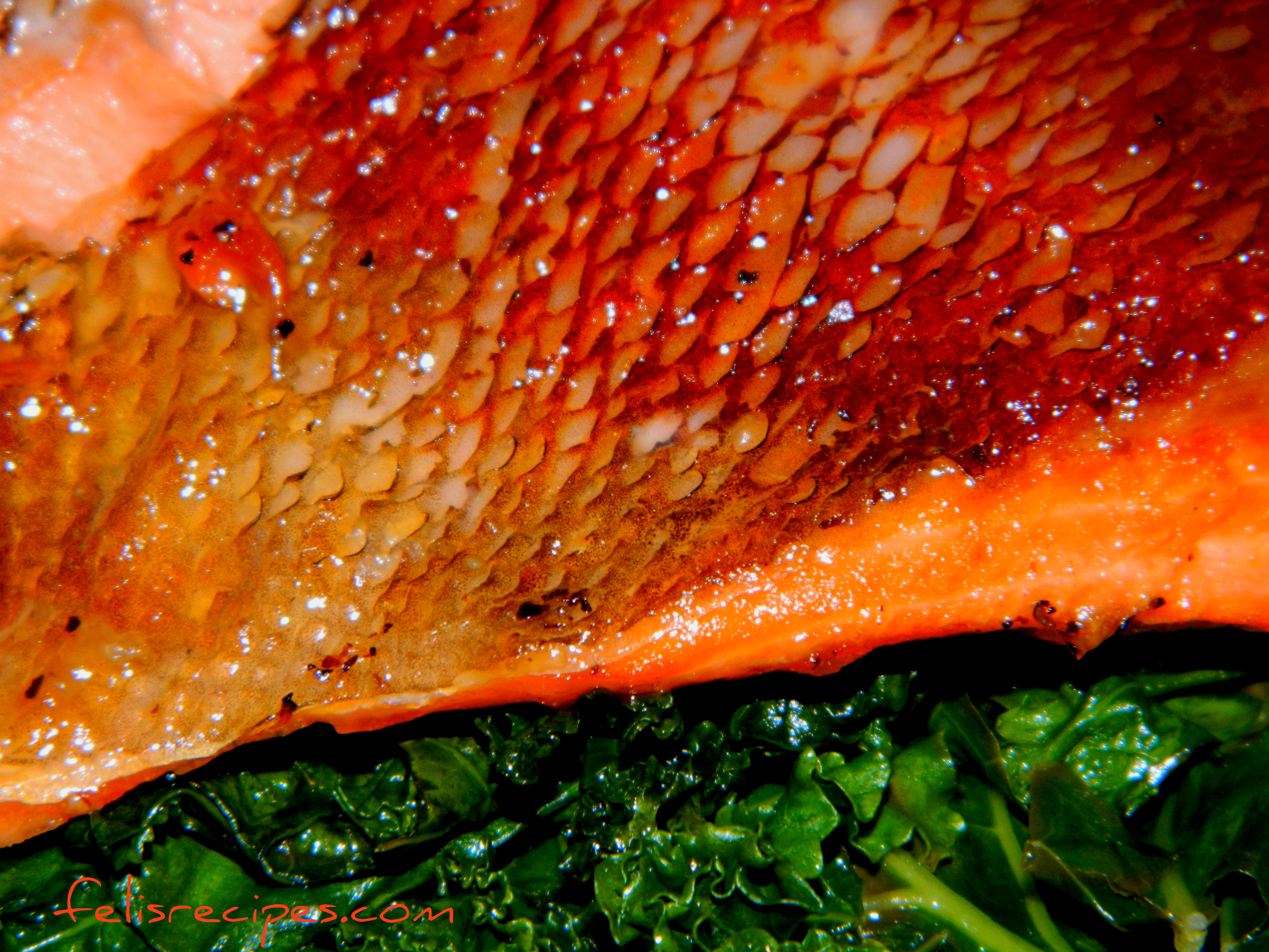 Oven baked salmon with Kale and Swiss Chard.jpg